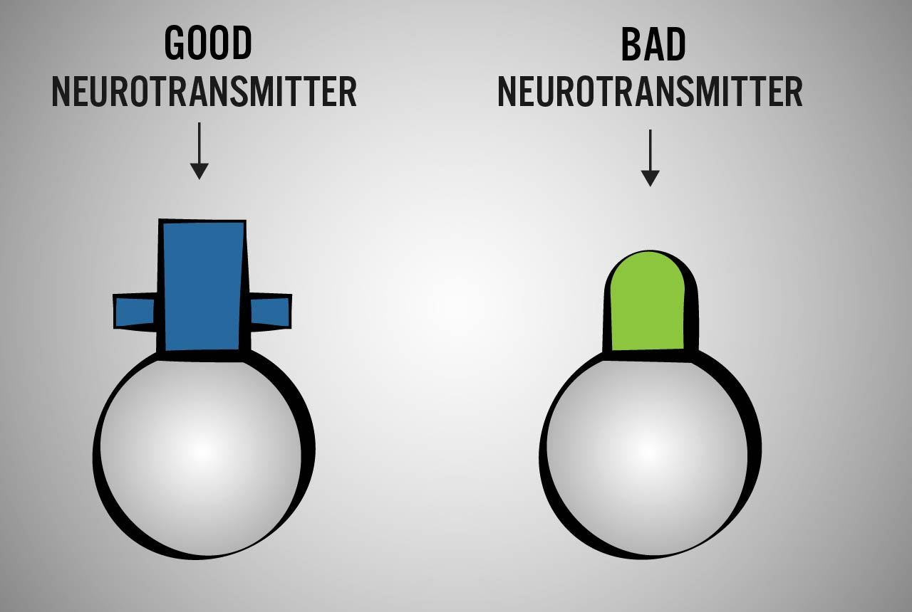 different types of neurotransmitters